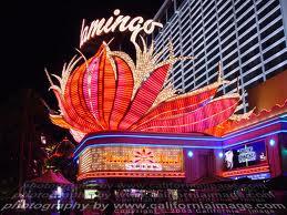 Flamingo Online Casino