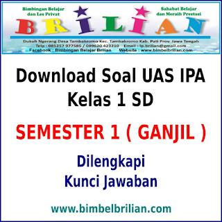 Download Soal UAS IPA Kelas 1 Semester 1 ( Ganjil ) Dan Kunci Jawaban