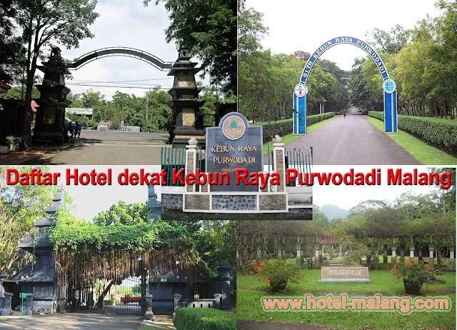 Daftar Lengkap Hotel Dekat Kebun Raya Purwodadi Malang, Nama, Alamat, Kontak dan Tarif
