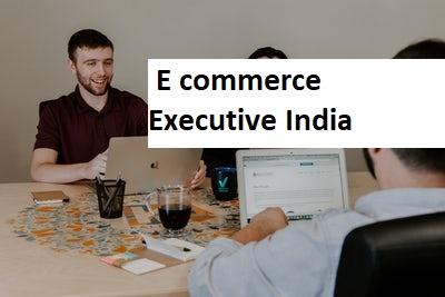 E commerce Executive Delhi NCR