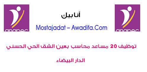 الوكالة الوطنية لإنعاش التشغيل والكفاءات: توظيف 20 مساعد محاسب بعين الشق الحي الحسني الدار البيضاء