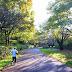 はじめての南大沢ランニングコース #001:尾根緑道