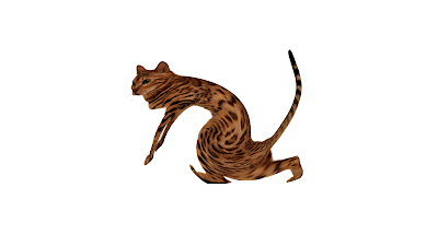 Mr Cat