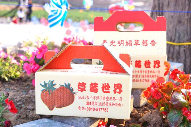 DSC00897 - 台中觀光果園│採草莓不用去大湖,台中草莓世界就在潭子慈濟醫院對面開採囉