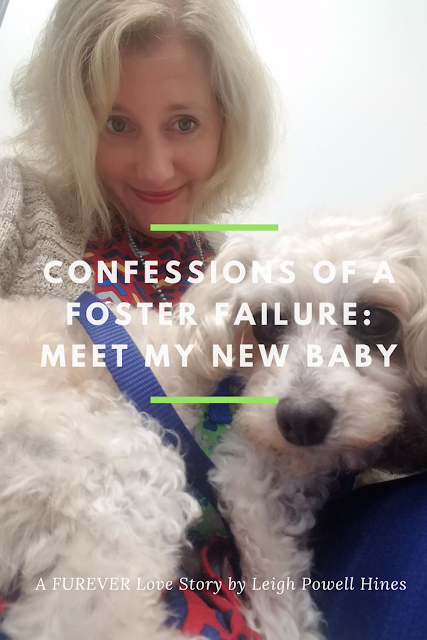 Confessions of a Foster Failure: A FUREVER Love Story by Leigh Powell Hines