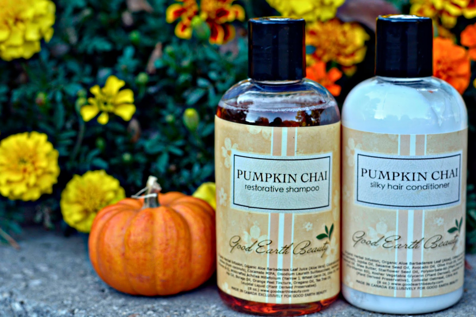 Good Earth Beauty Pumpkin Chai Shampoo