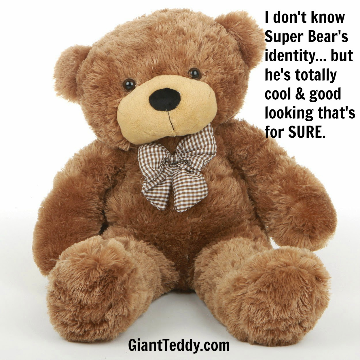 Sunny Cuddles, life-size mocha brown Giant Teddy bear, says he doesn't know who Super Bear is... but he admires him greatly!