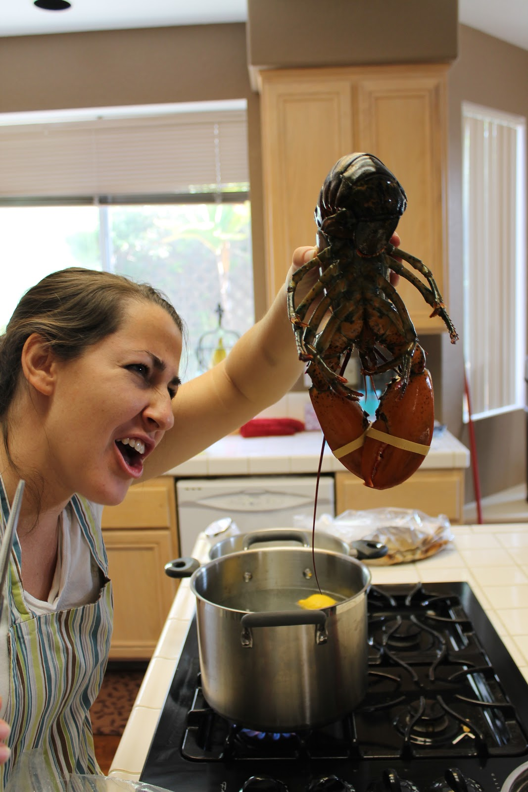 Youtube Cooking: How To Cooke Live Lobster
