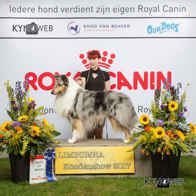 2 titles 1 dogshow