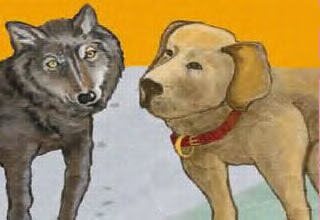 Hasil carian imej untuk Anjing Gemuk, di leher ada rantai