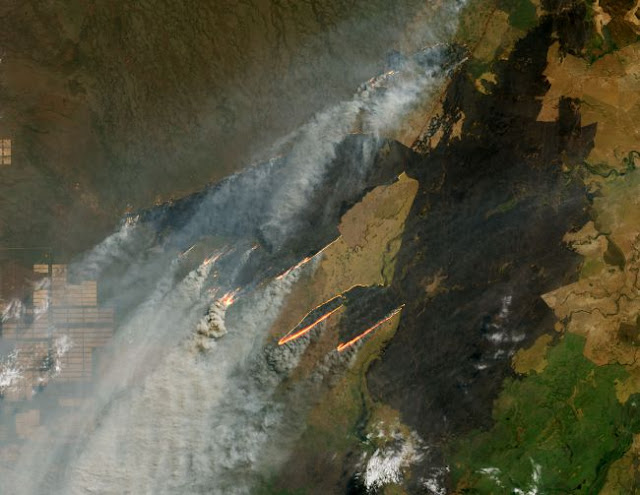 amazonia vista do espaço - landsat 8