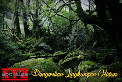 Lingkungan Hidup, Pengertian Lingkungan Hidup, Fungsi Pokok Lingkungan Hidup.