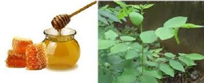 Cách trị nám da bằng mặt nạ rau ngót mật ong
