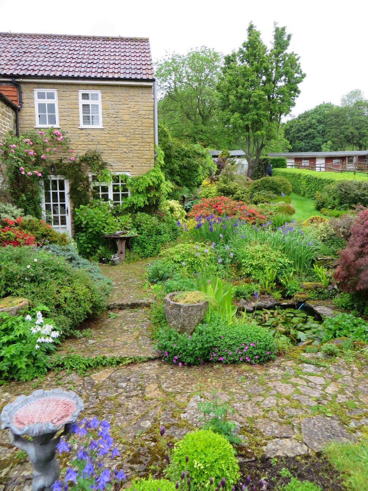 The Gardener's Eye: Chiffchaffs, A Plantsman's Cottage
