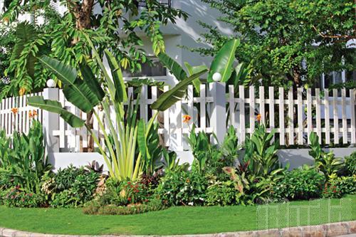 Hình ảnh mẫu hàng rào đẹp với phong cách thiết kế đơn giản