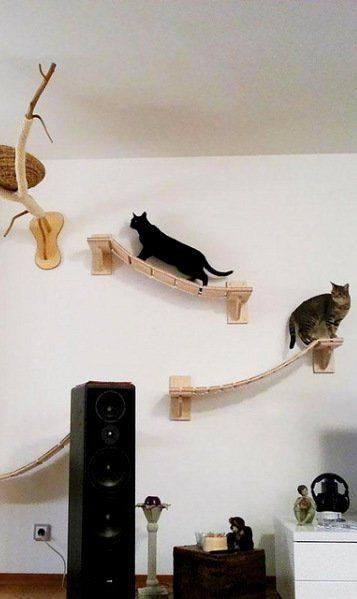 92 Desain Kandang Kucing Tingkat dari Kayu, Besi, dan ...