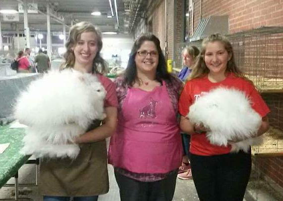 Northern California Angora Guild: 10/8/17 - 10/15/17