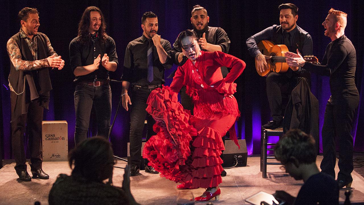 58bd23cf0 Vestimenta del flamenco.