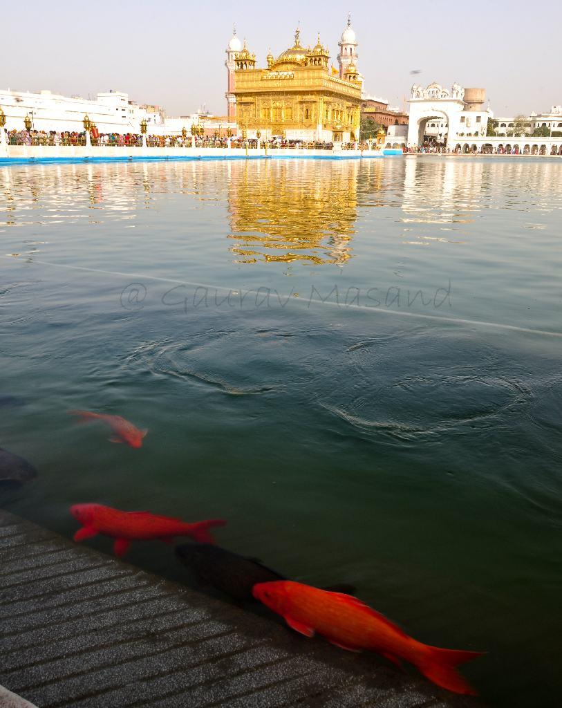 Gurudwara and Sri Akal Takht