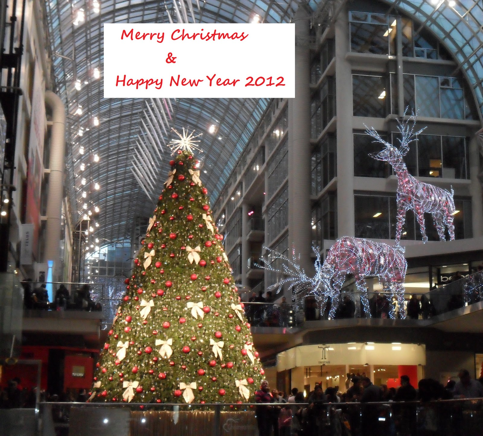 Hello Toronto: Merry Christmas From Toronto: Juha & Nuudia