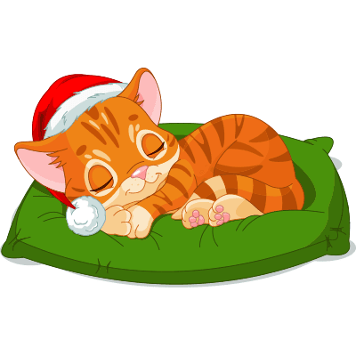 Napping Santa Cat