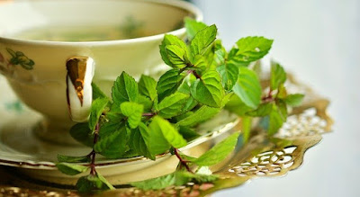 Peppermint-Effective natural remedies to cure Toothache.
