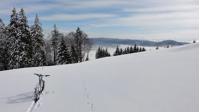 Snow-Biking
