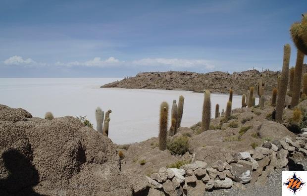 Salar de Uyuni, Isla Incahuasi