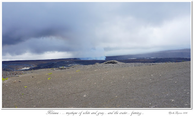 Kilauea: ... mystique of white and gray... and the crater... fuming...