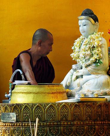 Monk Buddha and Flowers