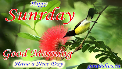 23-12-2018 Good Morning wishes image Today