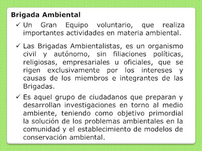 ¿Que es una Brigada Ambiental?
