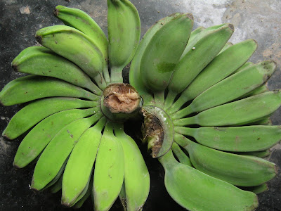 How to Lose Weight Using Banana Fruit