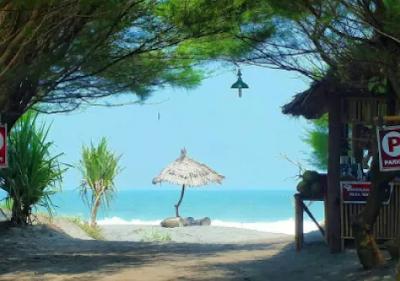 Pantai Cemara Sewu Bantul Jogja