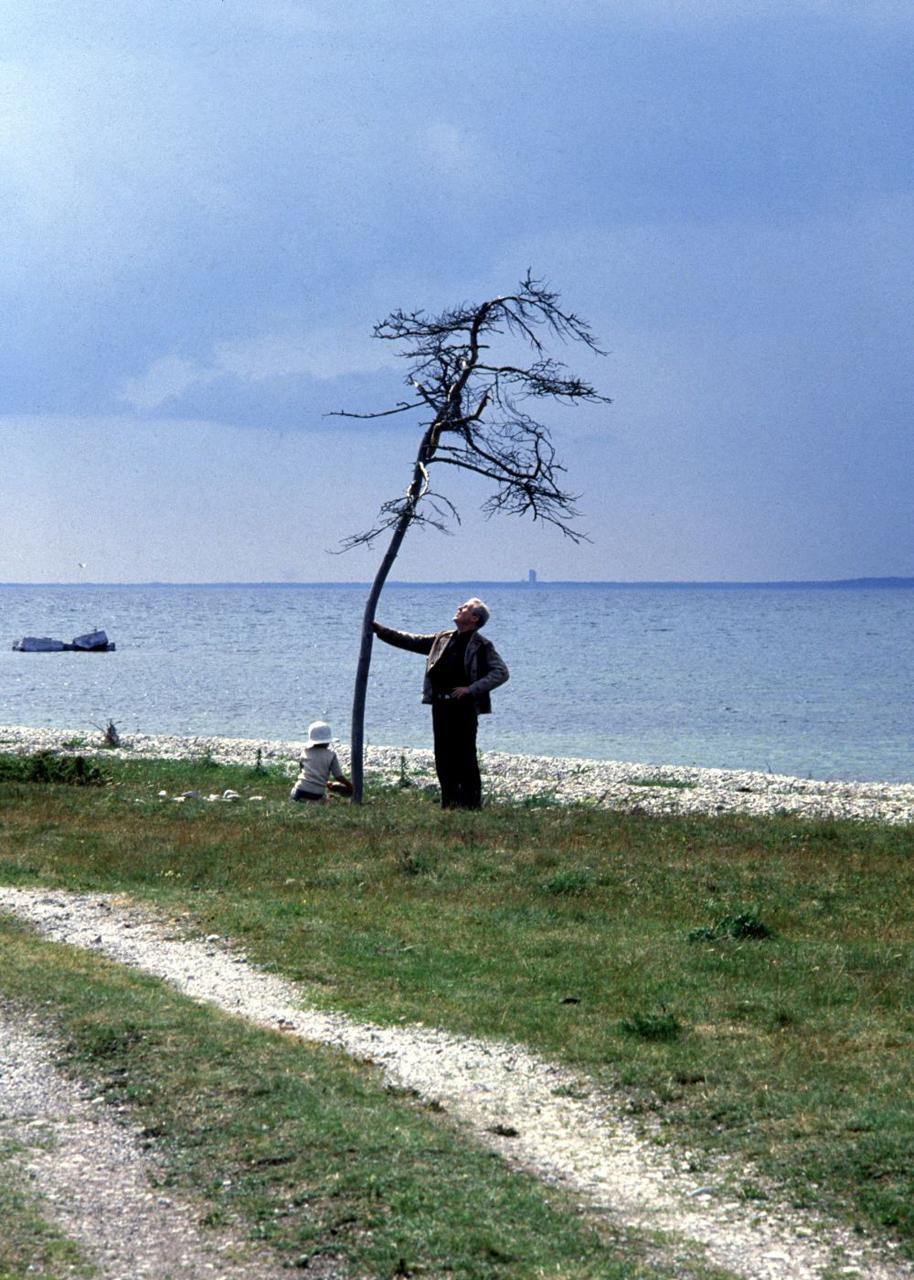 durkin tyson tree