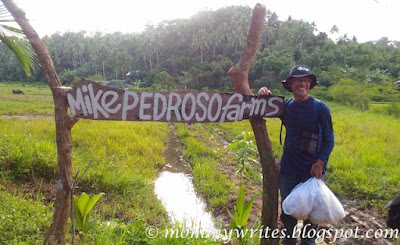 Mike Pedroso Farms: An Armchair Farmer's Journey to Developing an Integrated Diversified Organic Farm
