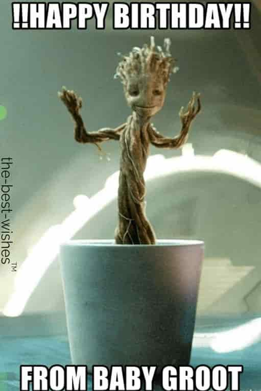 baby groot wishing you happy birthday meme