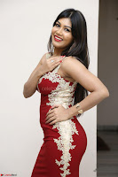 Rachana Smit in Red Deep neck Sleeveless Gown at Idem Deyyam music launch ~ Celebrities Exclusive Galleries 069.JPG