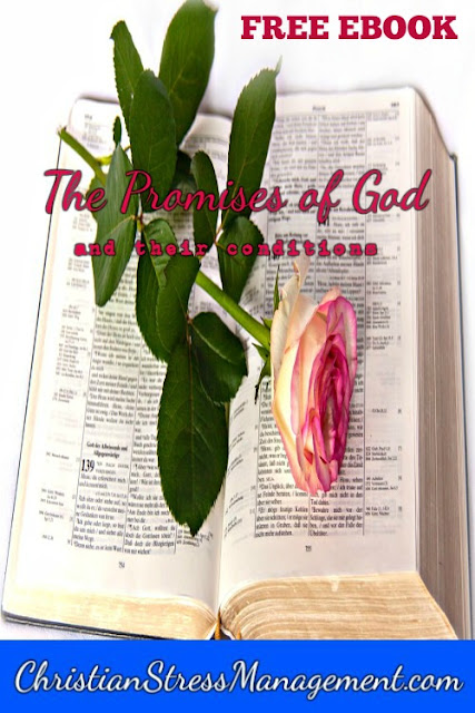 Free Christian PDF Ebook The Promises of God