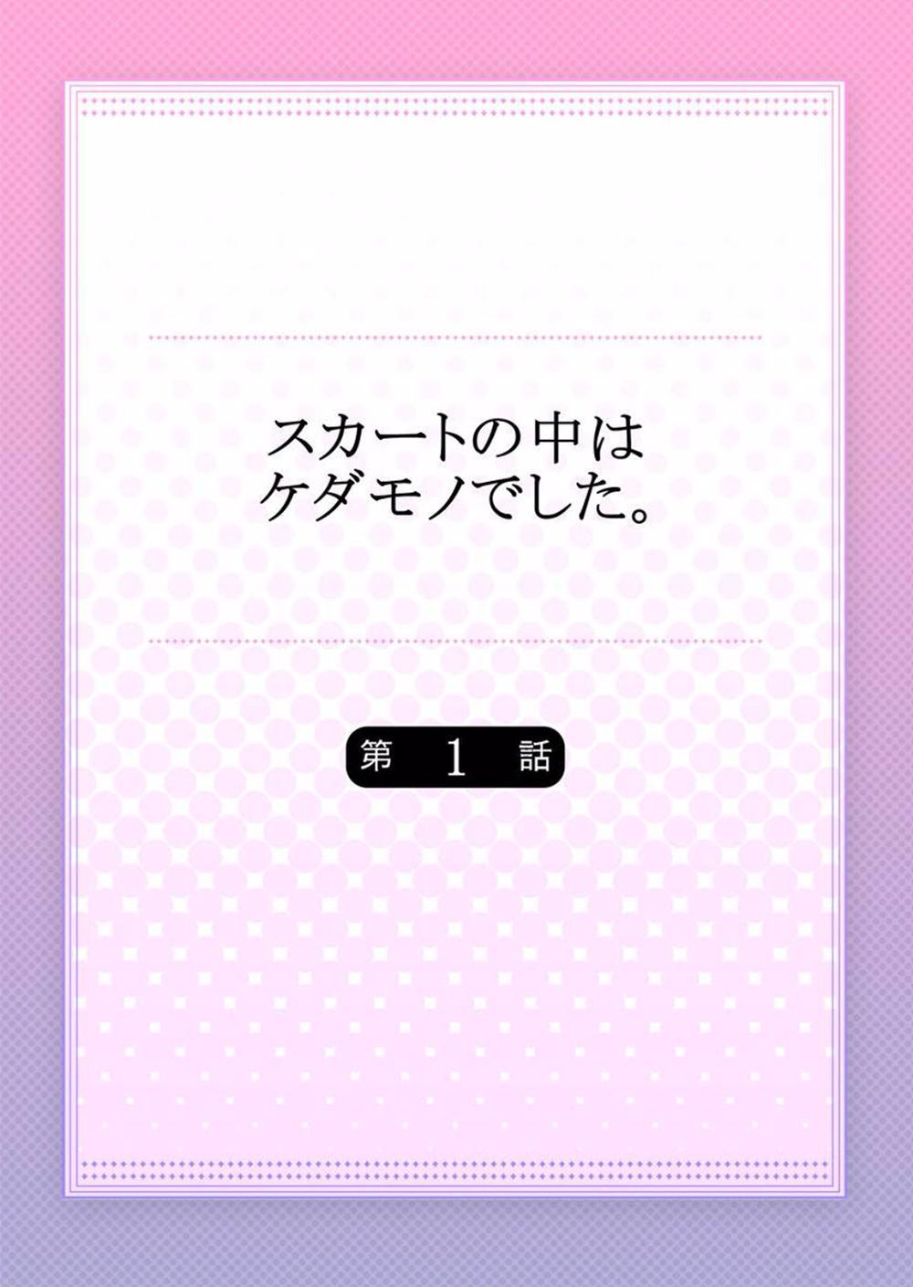 Hình ảnh 2 trong bài viết Skirt no Naka wa Kedamono Deshita