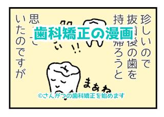 歯科矯正の漫画22 抜歯は慎重にと大変だ編