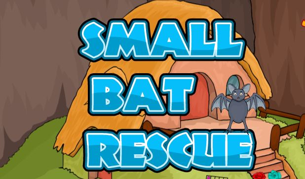 Small Bat Rescue