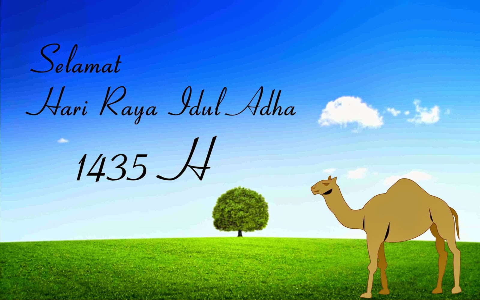 Download 8800 Background Keren Idul Adha Paling Keren