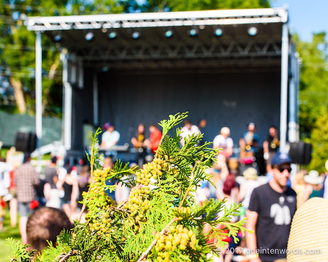 Riverfest Elora 2017 at Bissell Park on August 18, 19, 20, 2017 Photo by John at One In Ten Words oneintenwords.com toronto indie alternative live music blog concert photography pictures