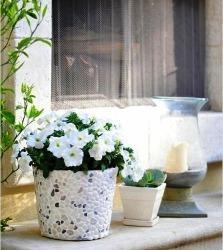 Kerajinan Tangan Sederhana, Pot Bunga Batu