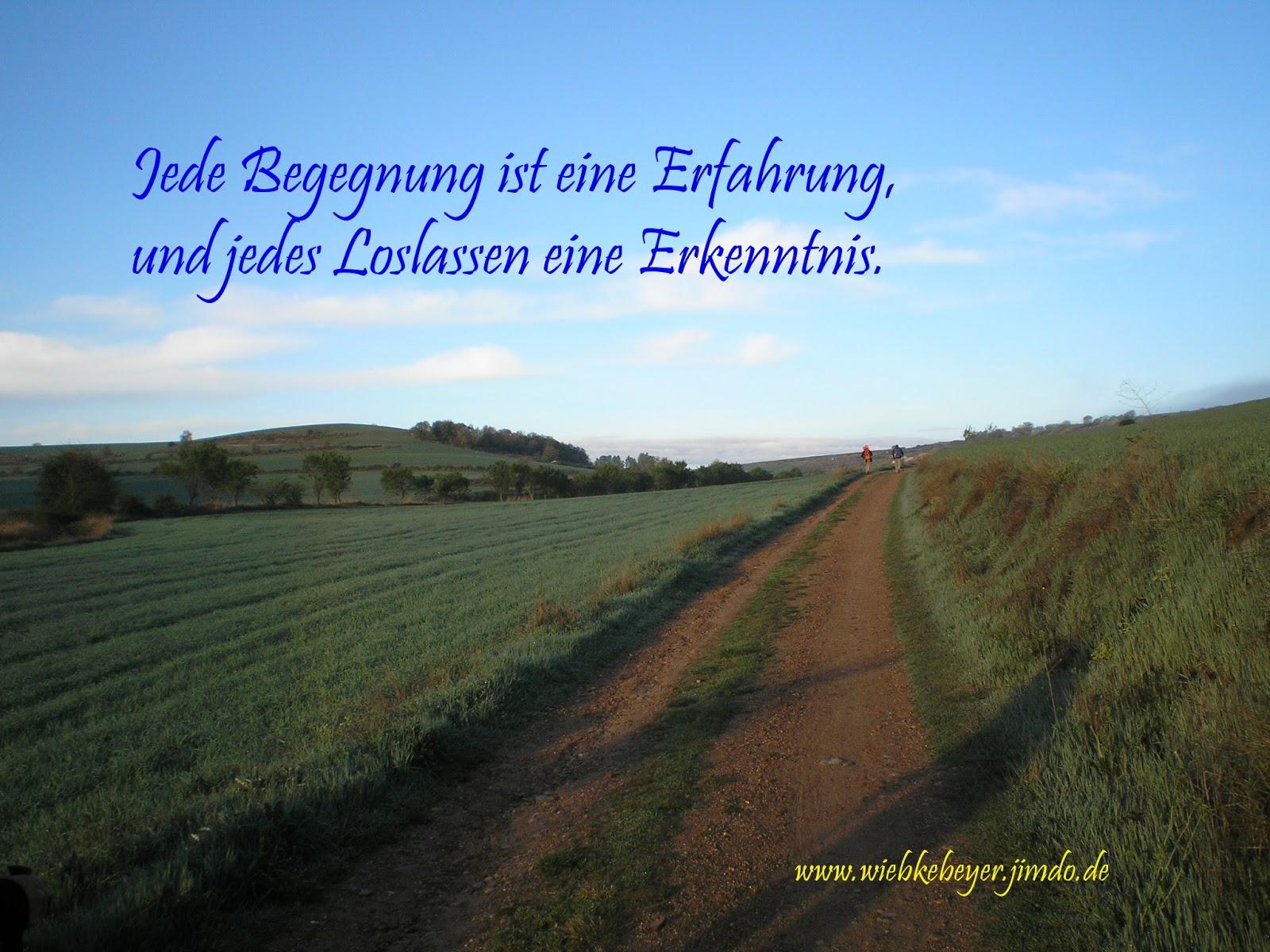 Wiebke B. Beyer: Loslassen lernen ...