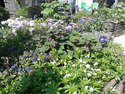 RHS Cardiff 2017 Bridgend College Life of a Hermit Garden