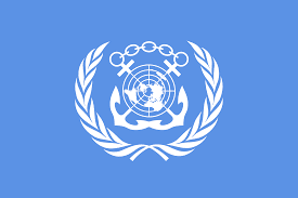India Wins Key United Nations Subsidiary Bodies Election