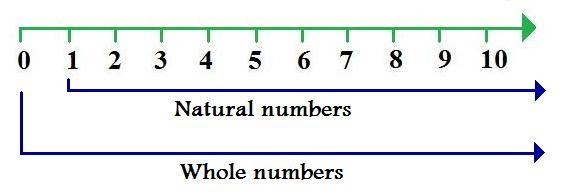 Natural Number Vs Positive Integer