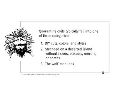 Just for Fun 17: Quarantine Coifs Copyright 2020 Christopher V. DeRobertis. All rights reserved. insilentpassage.com